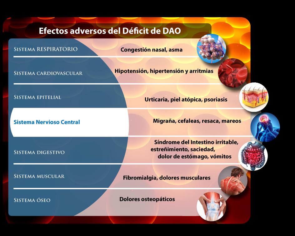efectos adversos del déficit de dao: migraña, piel atópica, asma, síndrome de intestino irritable, fibromialgia